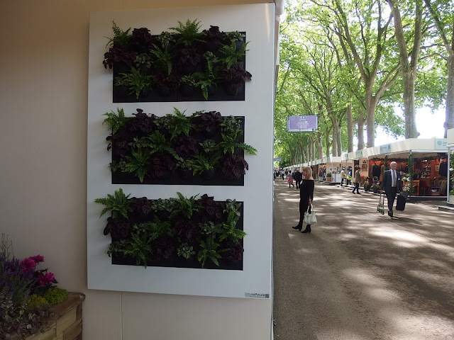 A green wall picture found on Eastern Avenue at Chelsea Flower Show