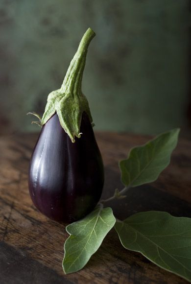 Aubergine, or, egg plant