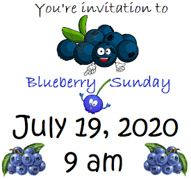 Blueberry Sunday 2020