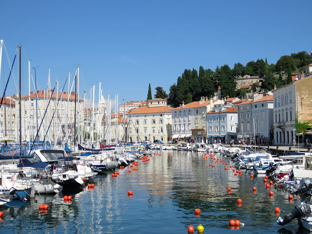 Things to do in Piran Slovenia: check out Piran harbour