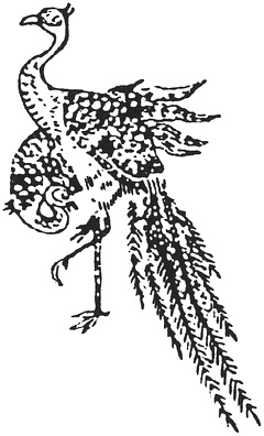 火の鳥のモデルになった??幻の美しい鳥、ケツァール【n】