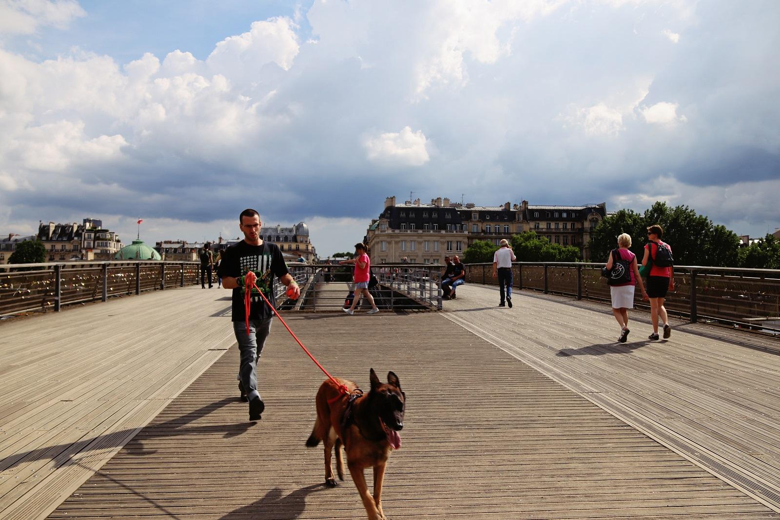 Passerelle, promeneur avec son chien et bâtiments