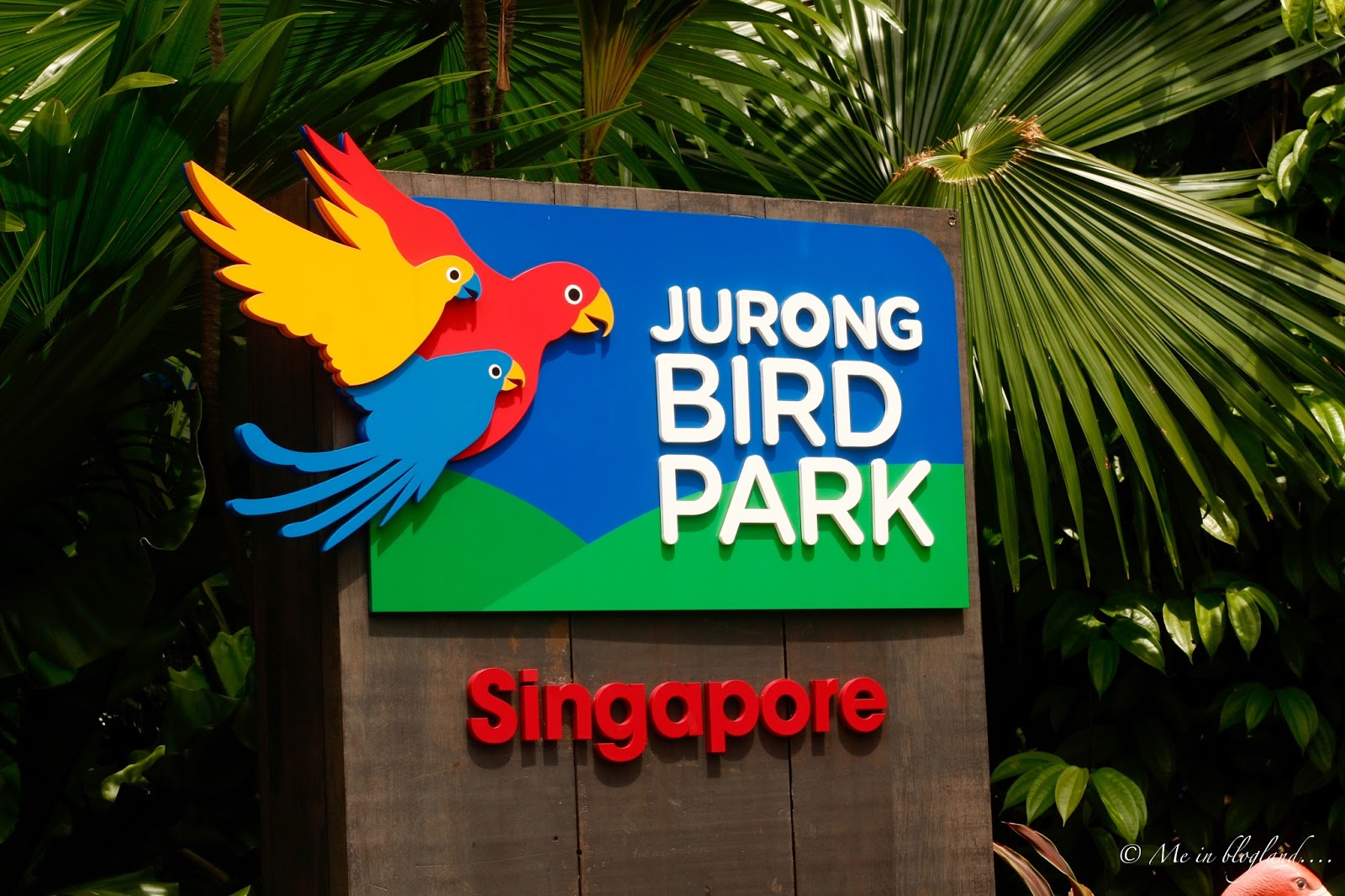 Bird Themed Home Decor