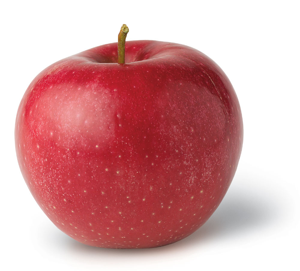 Apple Cores Are A Myth: Inkspired Musings: An Apple A Day