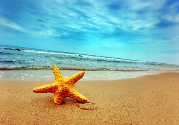 Um adeus imperfeito é um regresso inimitável nos nossos sonhos