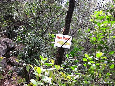 Señales oportunas en el Cerro de la Silla