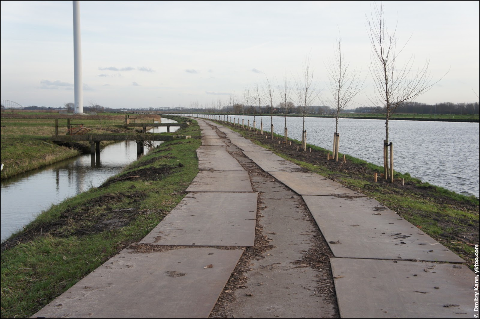 The Amsterdam-Rijnkanaal with young trees.