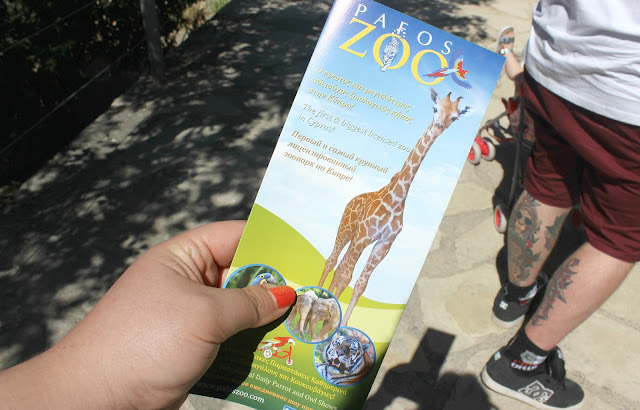 Pafos Zoo Cyprus Review