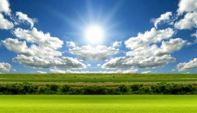Manfaat Sinar Matahari Bagi Hewan Adalah