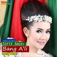 Lirik Lagu Sofie Angel Bang Ali