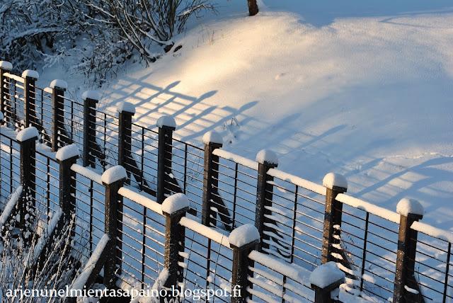 talvi, valokuvaus