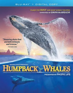 Download Film Humpback Whales (2015) BluRay 1080p Subtitle Indonesia