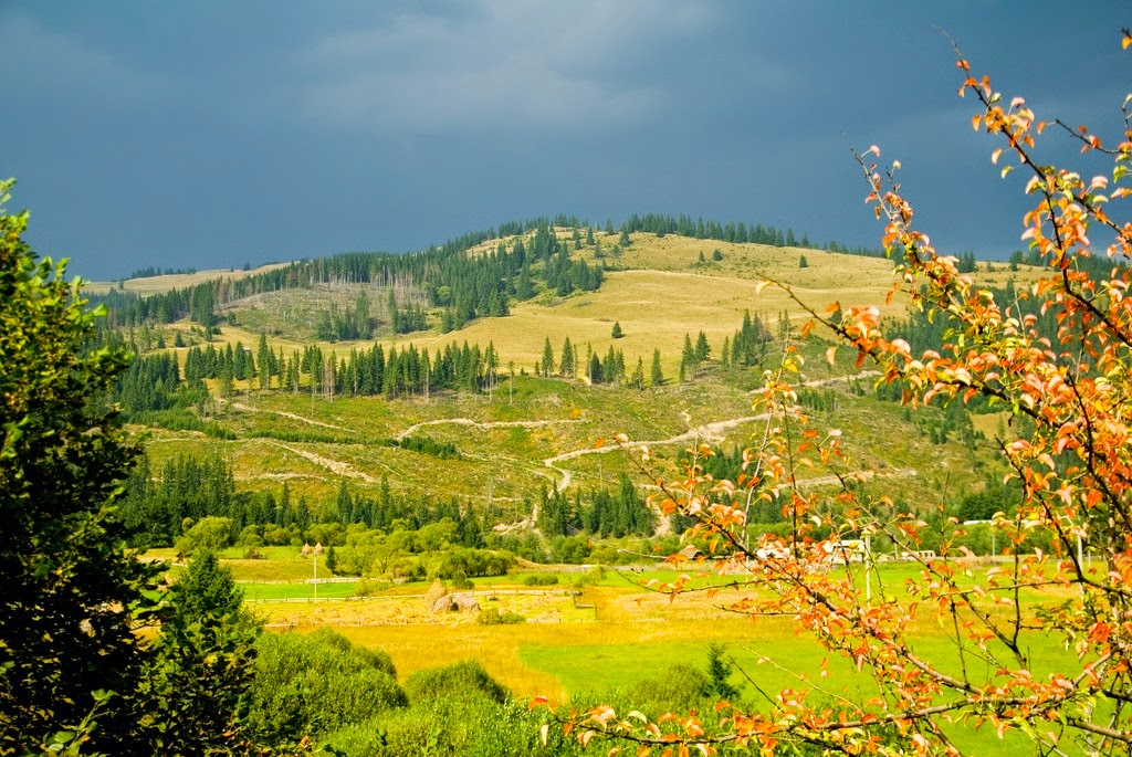 canh dep Romania 41