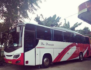Sewa Bus Medium Murah, Sewa Bus Medium, Sewa Bus Medium Jakarta