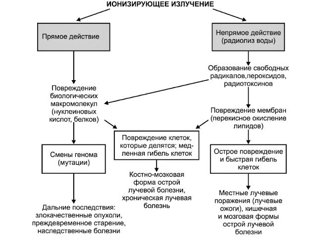 Воздействие ионизирующего излучения