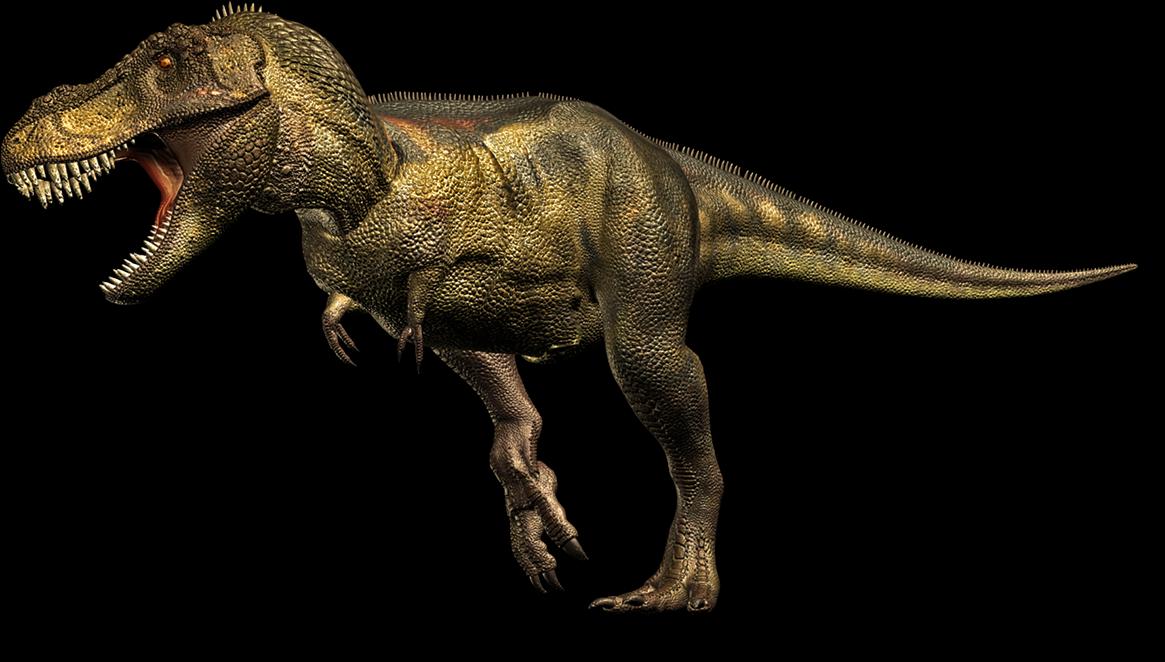 Mundo Teropodo Dinoficha Tiranosaurio Rex El auténtico tiranosaurio rex no se parecía en nada al de parque jurásico: mundo teropodo blogger