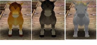 Cara Mendapatkan Kuda di HM AWL