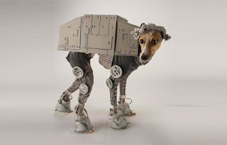 Imperial dog