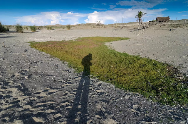 House on a Hill Culili Point Paoay Sand Dunes Ilocos Norte Philippines