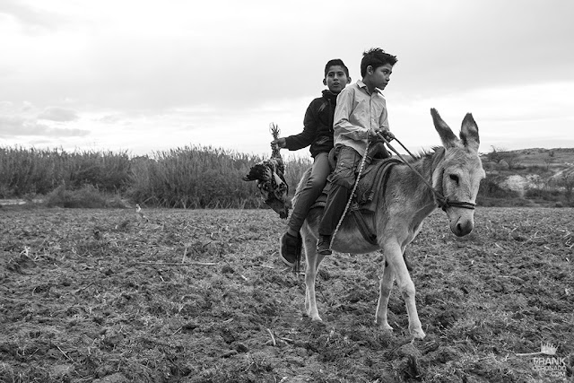 niños zautecos en mula