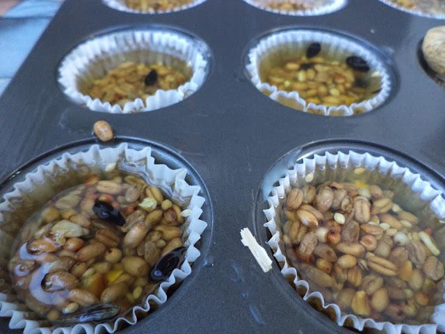 Cupcakes voor de vogels
