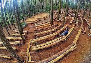 Paket Outbound Hutan Pinus Imogiri, Lokasi Outbound Hutan Pinus Jogja