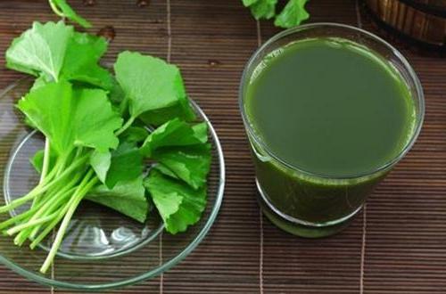 chua-seo-ro-chi-voi-rau-ma-va-vitamin