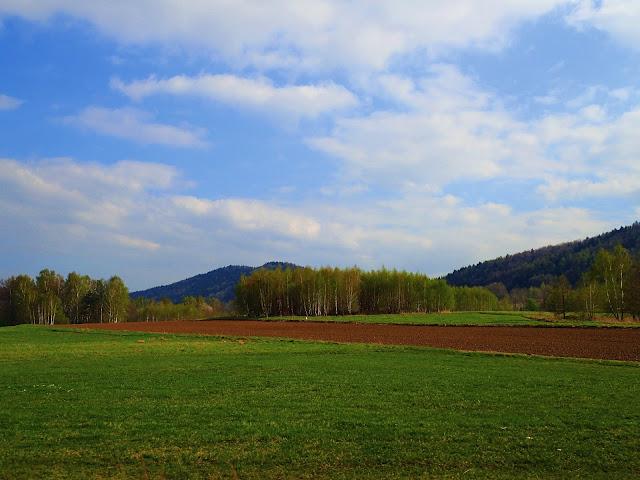 Pogórze Wielickie i Beskid Makowski - wiosennie