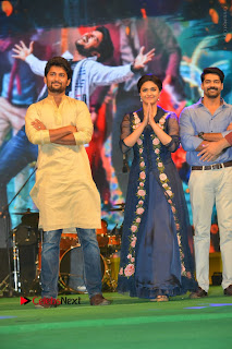 Nenu Local Audio Launch Stills  0119.JPG