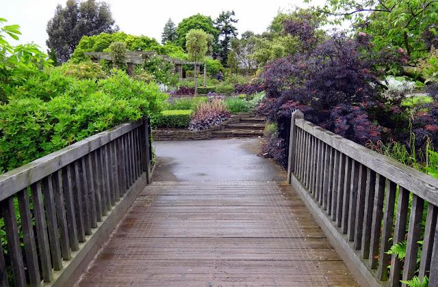 bridges to run across