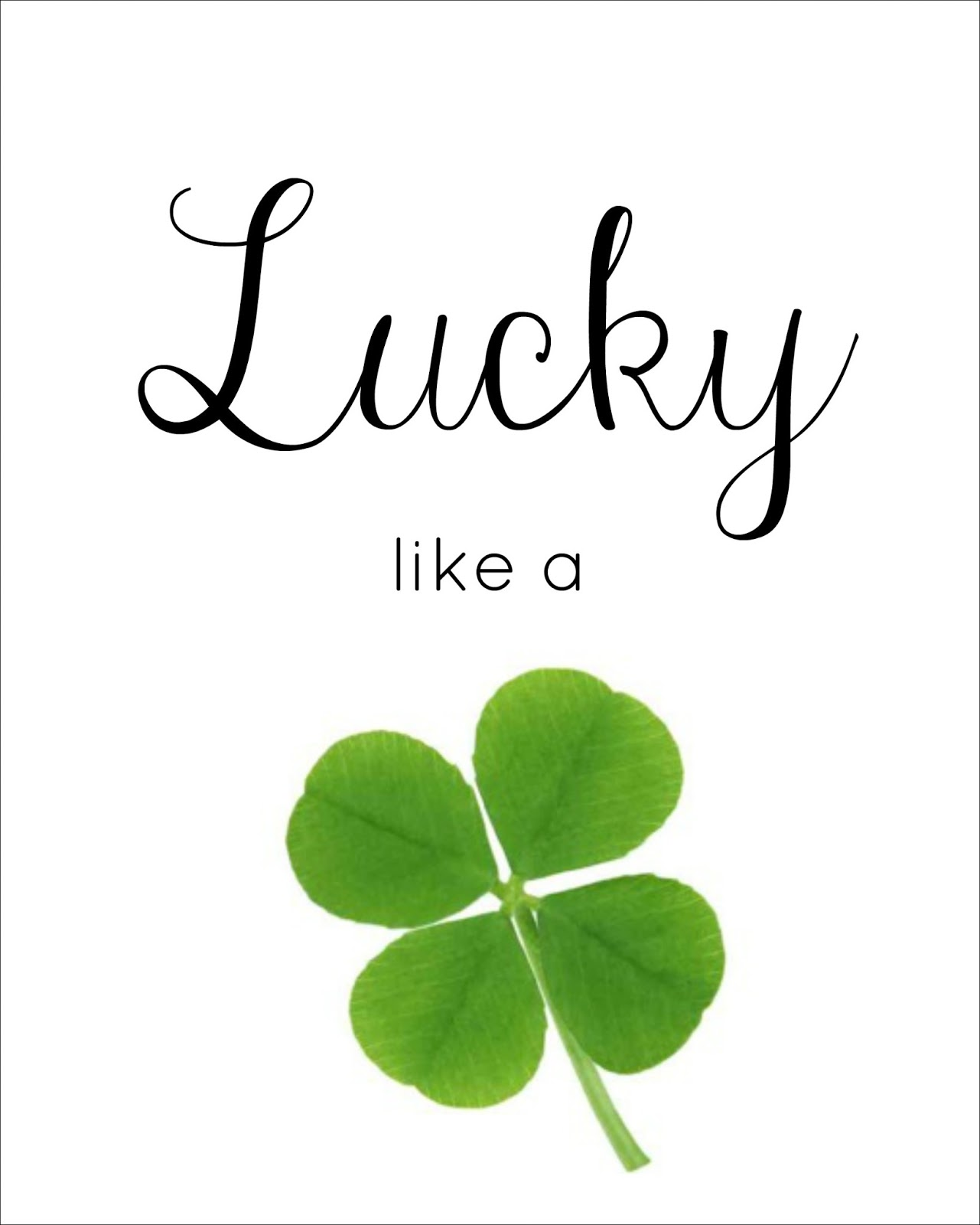 St Patrick S Day And Spring Printables