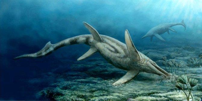 1. Shastasaurus