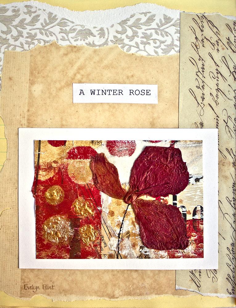 Winter Rose in Sketchbook