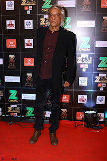 Bollywood Celebrities on the Red Carpet Of Zee Cine Awards 2017 Exclusive 078.JPG