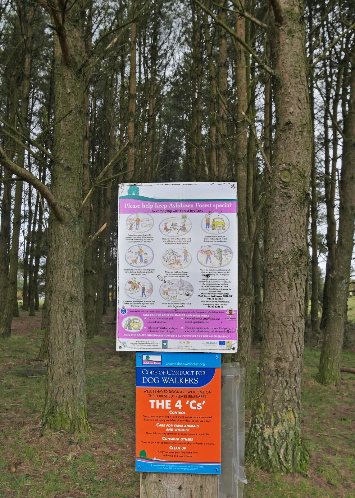 A sign in Ashdown Forest, East Sussex