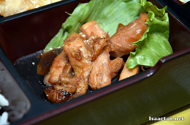 Chicken meat in teriyaki sauce