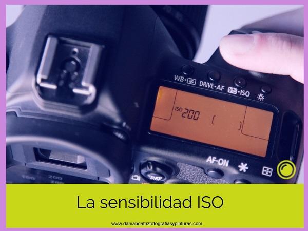 ISO-en-Fotografía-Qué-es-y-Cómo-Se-Usa