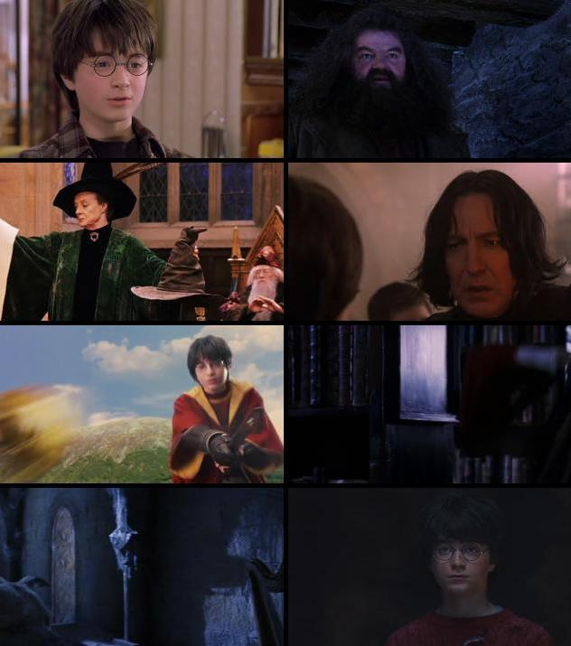 Harry Potter And The Sorcerers Stone 2001 Extended Dual Audio Hindi 480p BluRay