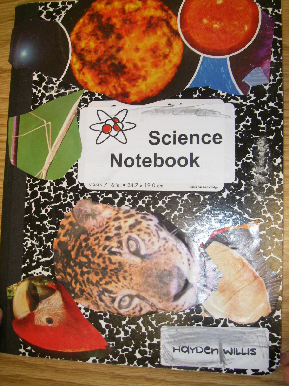Teaching Science With Lynda You Oughta Know About Setting