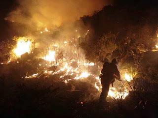 Incêndio na Serra do Boqueirão em Ituaçu