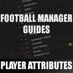 FM13 Player attributes