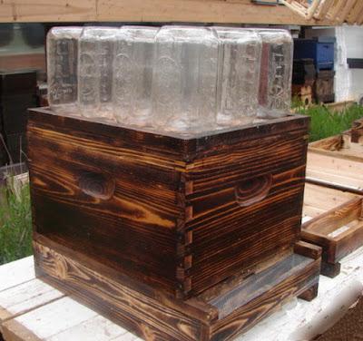 http://3.bp.blogspot.com/-Kzc0isf88lQ/Vpp0KHJJqYI/AAAAAAAAQgk/7TS_9rSRRXQ/s1600/how-to-easily-make-a-beehive-in-a-jar-diy_4.jpg