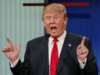 Trump's Ban and Visa Policy Does Not Affect Nigerians - US Ambassador