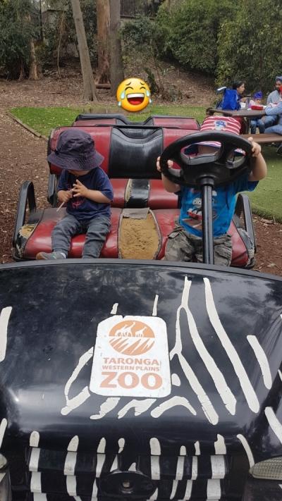 sydney with toddlers taronga zoo 4wd | awayfromblue
