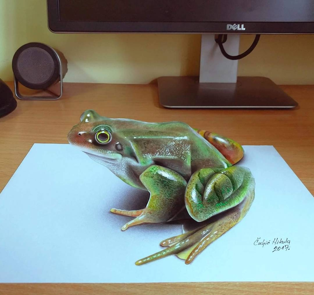 09-Frog-Nikola-Čuljić-2D-Realistic-Drawings-that-look-3D-and-a-Video-www-designstack-co