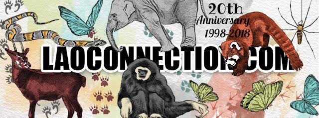 Artist Series:  MC/Animals of Laos