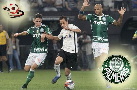 Palmeiras vs Avai FC 6h00 ngày 14/6 www.nhandinhbongdaso.net
