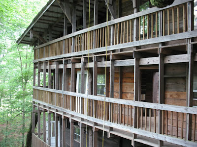 The World's Biggest Treehouse (14) 10