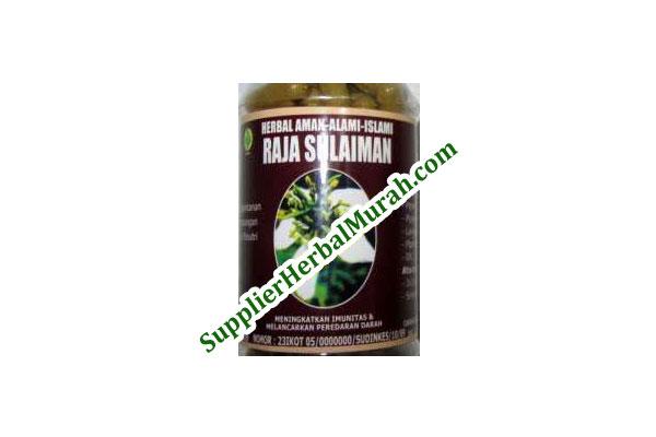 Herba Raja Sulaiman untuk Pria