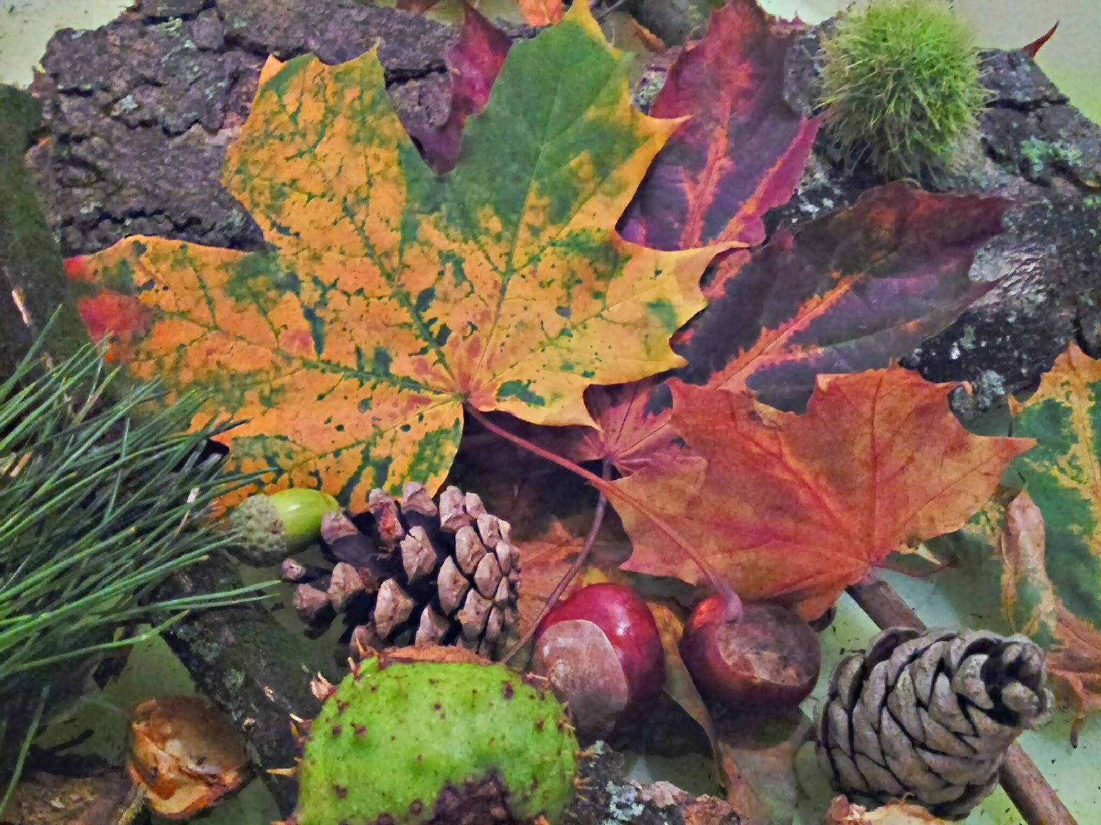 Eeny Meeny Miny Muslim Autumn Scavenger Hunt